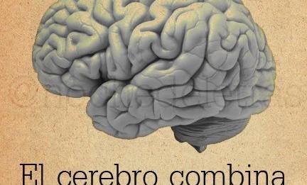 aprende a usar tu cerebro