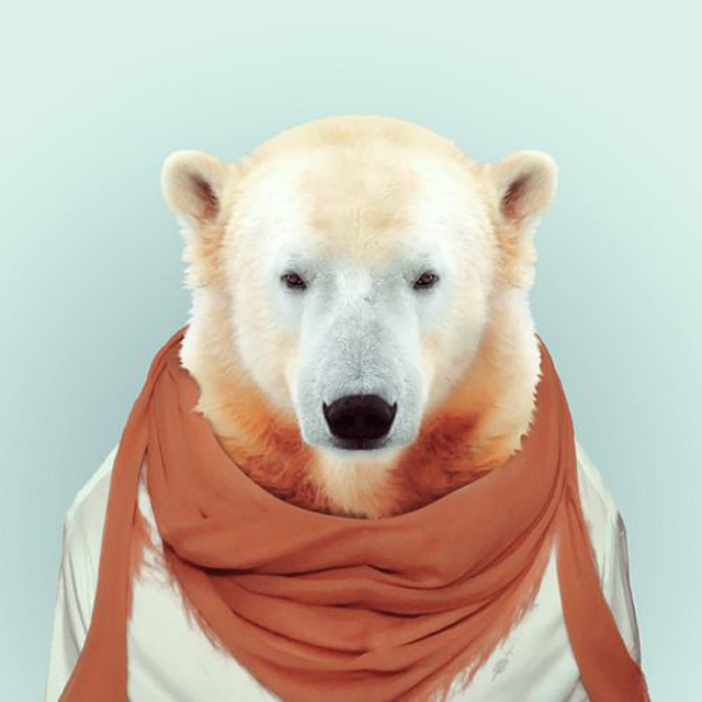 yago-partal- zoo-imagen